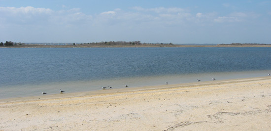 Barnegat Bay from the Seaside Heights shoreline